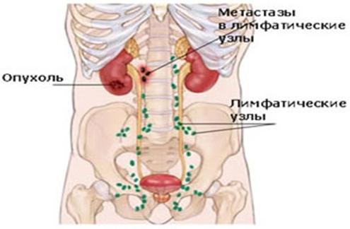 Стоимость УЗИ брюшной полости